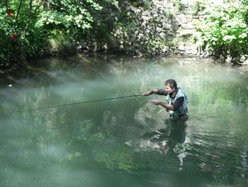 Les broderies du schéma sur la pêche